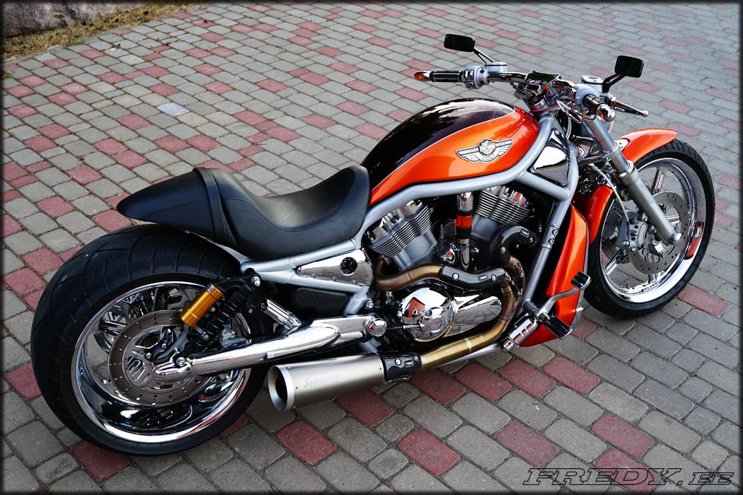 03 Harley Davidson Vrsca V Rod 7 Fredy Ee