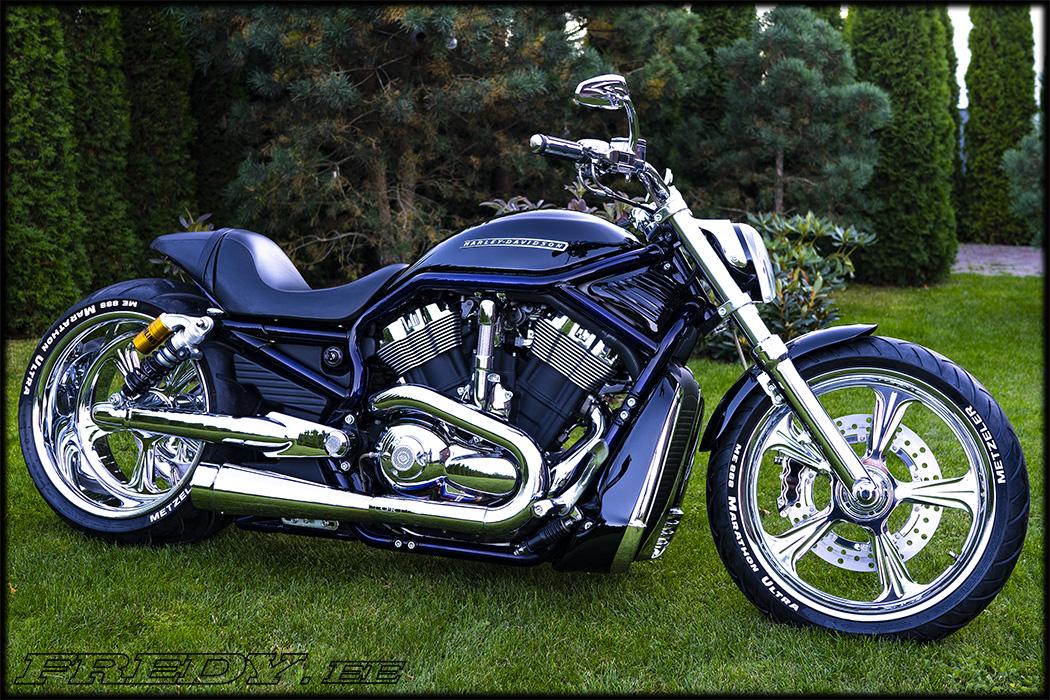 '02 Harley-Davidson VRSCA V-Rod 7