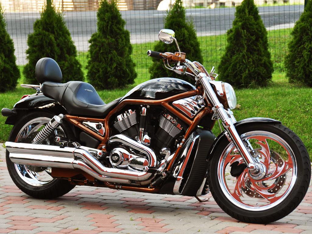 Harley Davidson Vrod Footpegs