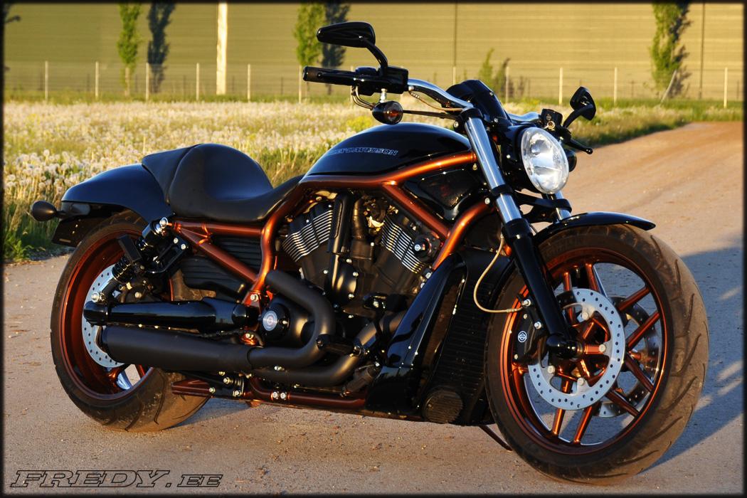 11 Harley Davidson Night Rod Special Fredy Ee