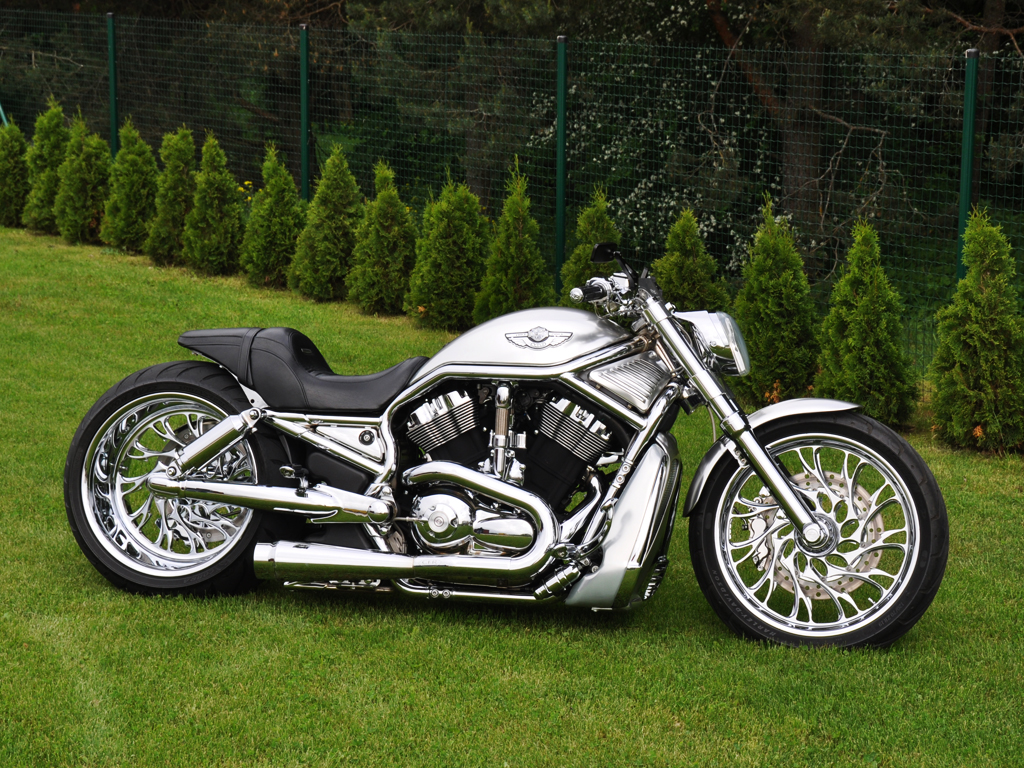 Harley V Rod Engine Diagram Wiring Will Be A Thing 2004 Twin Davidson Light Switch Covers Free Starter Schematic