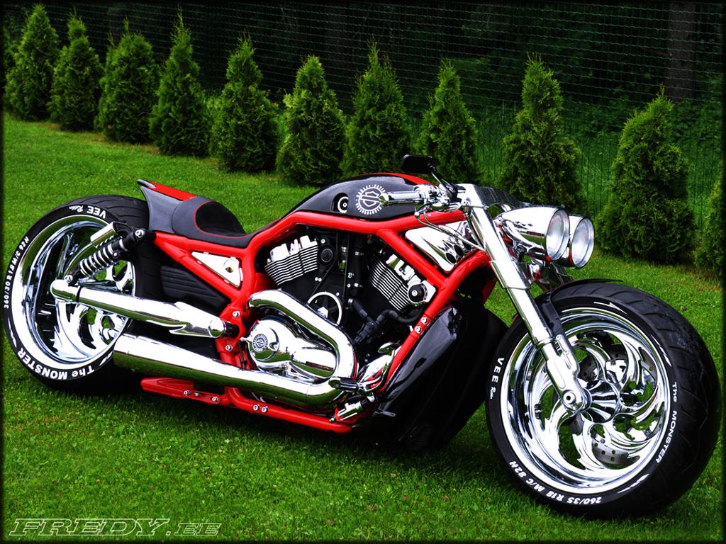 Harley Davidson V Rod Front Pulley