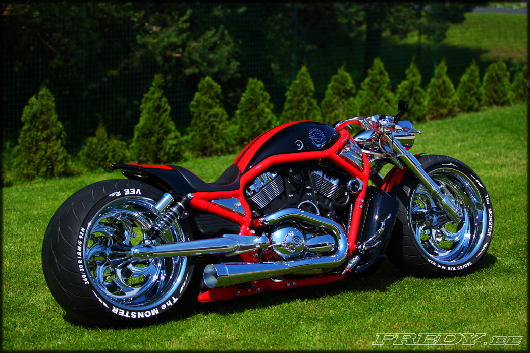 09 Harley Davidson Vrscaw Supercharged Fredy Ee
