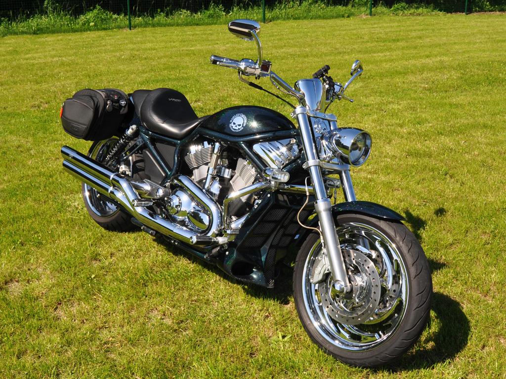 Harley Davidson Vrscr For Sale