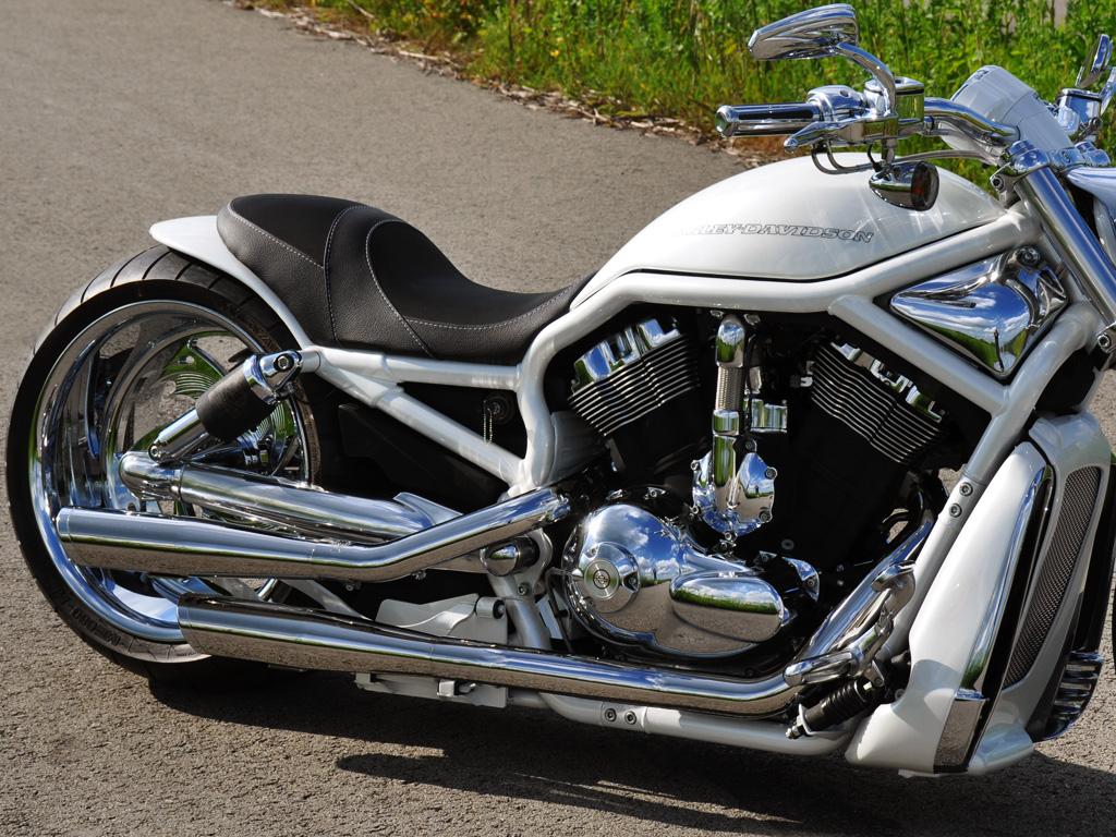 02 Harley Davidson Vrsca V Rod 2 Fredy Ee