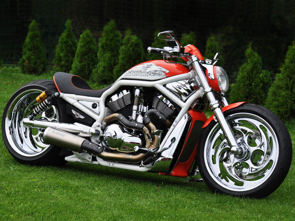 Harley Davidson V Rod How Many Cylinders