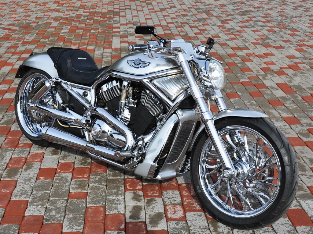 03 Harley Davidson Vrsca V Rod Fredy Ee